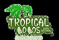 Tropical Cocos 100% natural casa de festas eventos workshops desfiles infantil teen adulto brinquedo brasilia df distrito federal asa norte asa sul megamundo festas