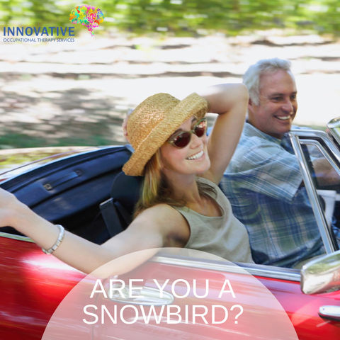 Are you a Snow Bird? You can travel with confidence, Innovative OT has you covered, as you travel.