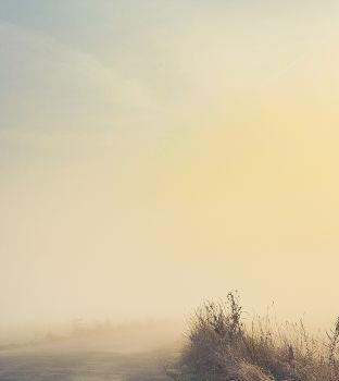 8. Спор Ветра с Солнцем