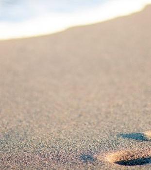 65. Следы на песке