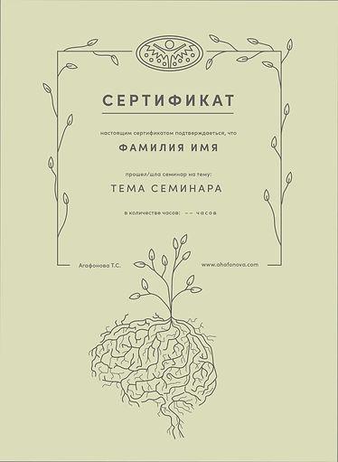 сертификат Агафонова Т.С-08.jpg
