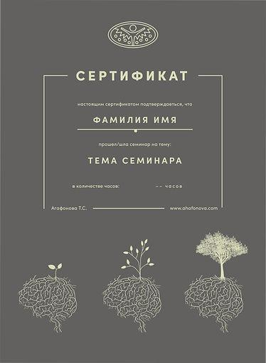 сертификат Агафонова Т.С-06.jpg