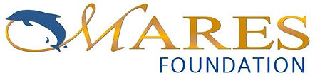 #1 Mares Foundation_logo_Gold.jpg