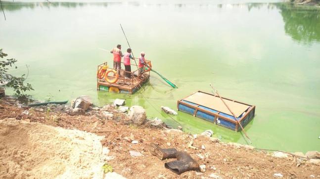lake work.jpg