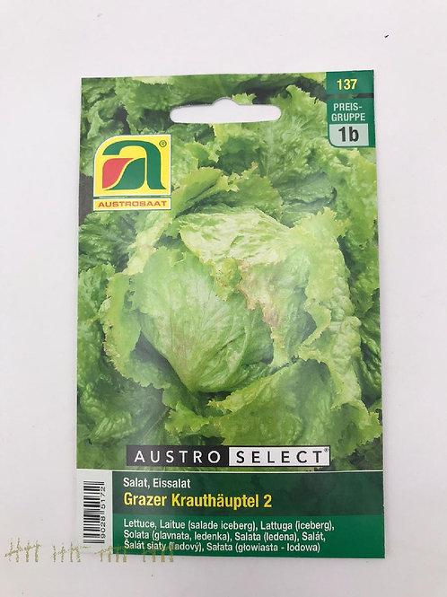Grazer Krauthäuptel 2,Eissalat - Saatgut