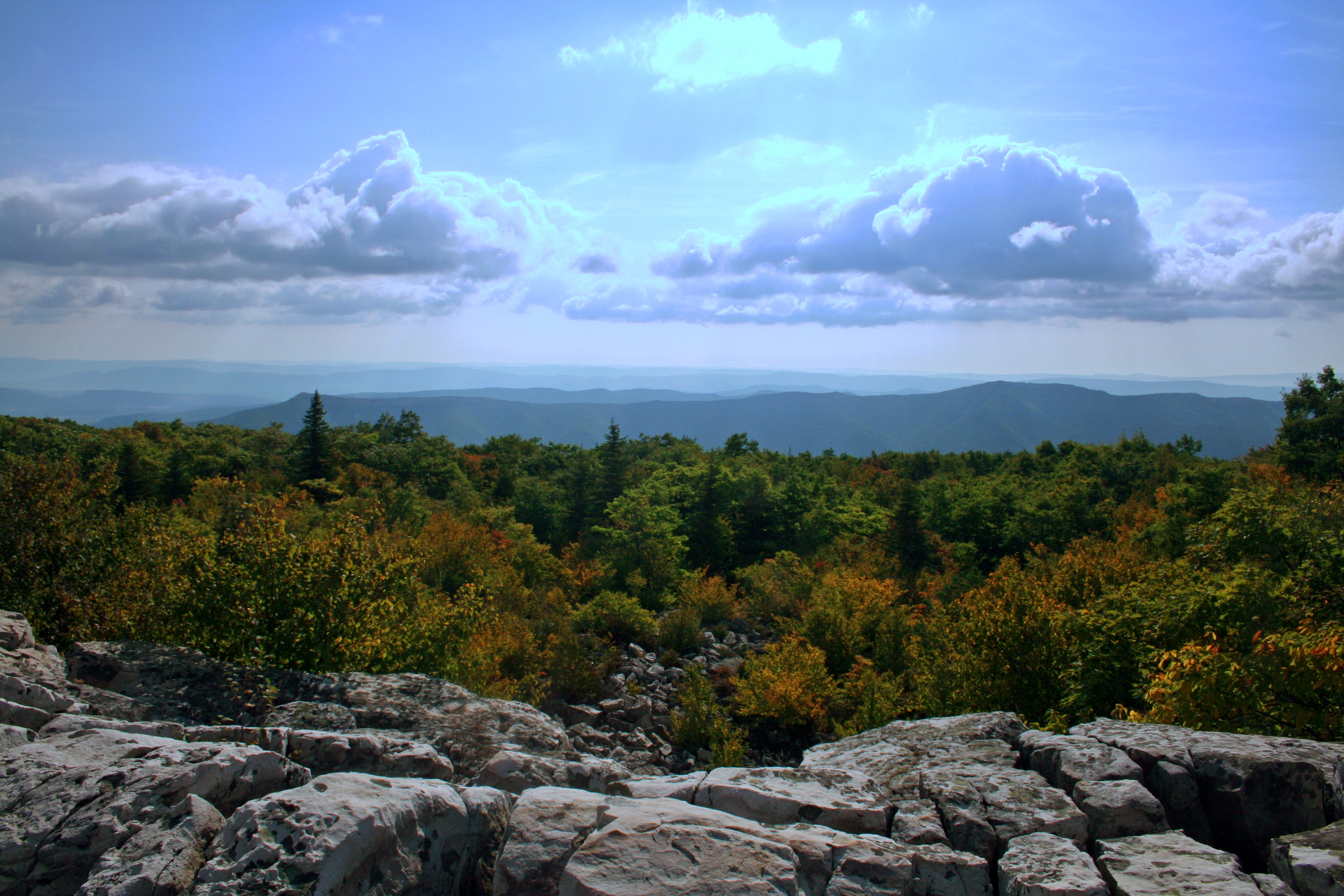 Dolly_Sods