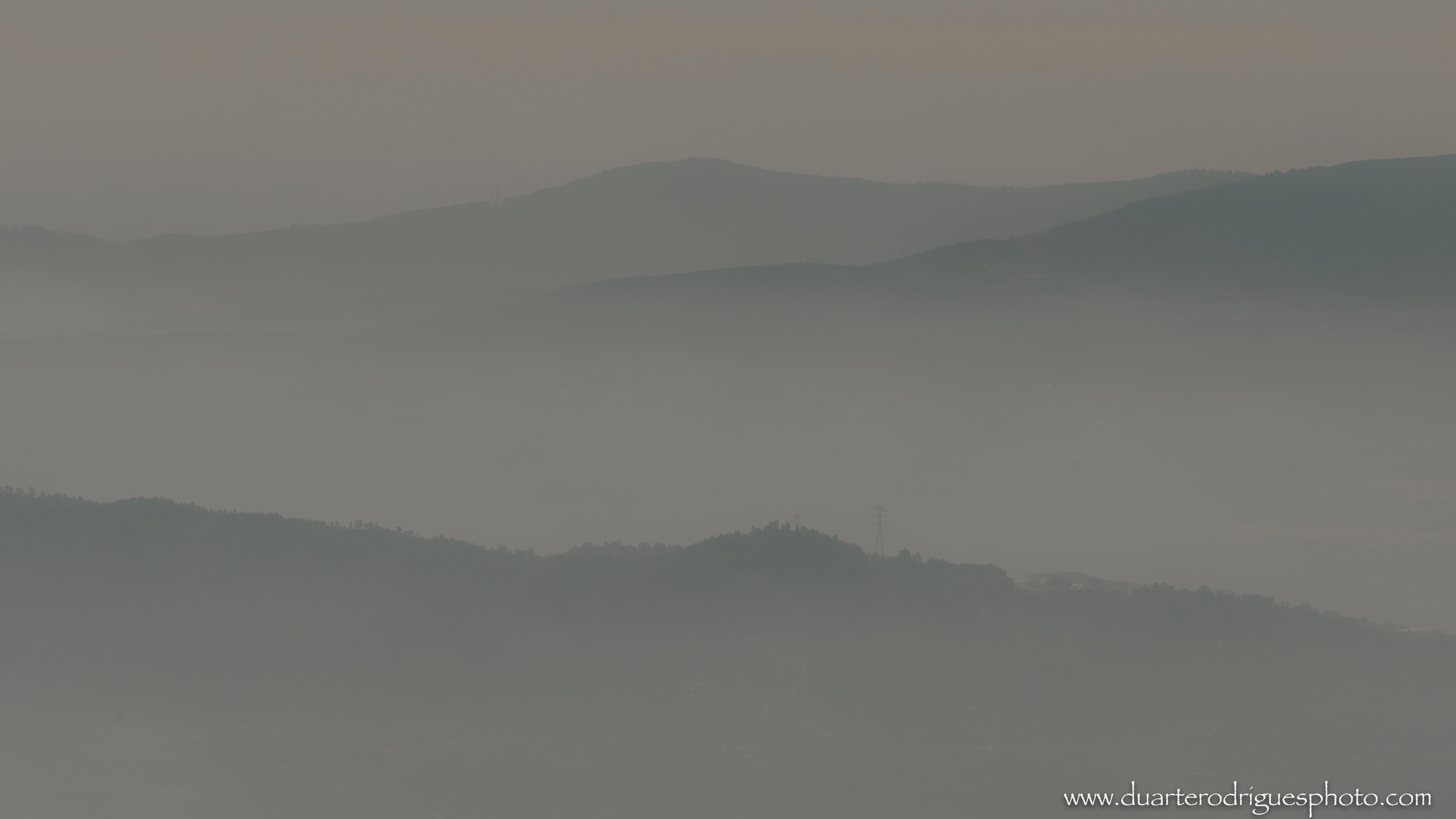 Morning of fog