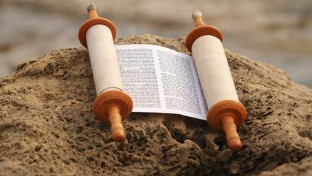 What Are Torah Bites?