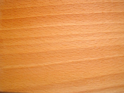 Beuken-houtsoort