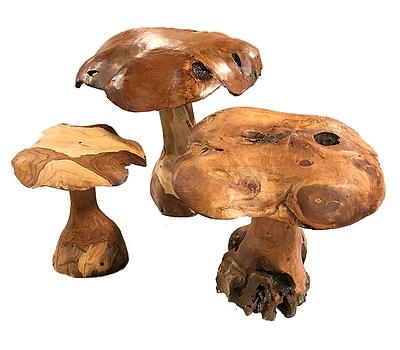 Mushrooms 3 Piece Set