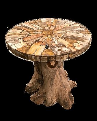 Petrified Wood Composite Side Table