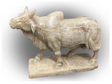 Onyx Brahma Bull