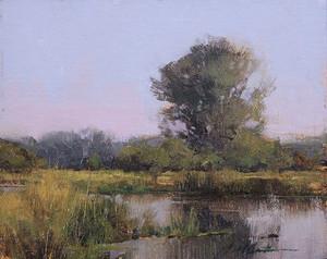 Montana Wetlands