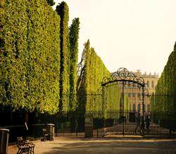 Irrgarten Schönbrunn