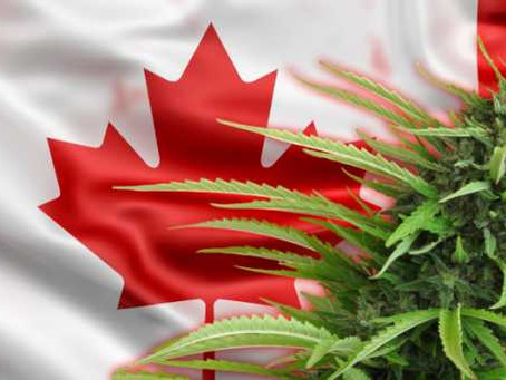 How the Canadian election will affect cannabis stocks