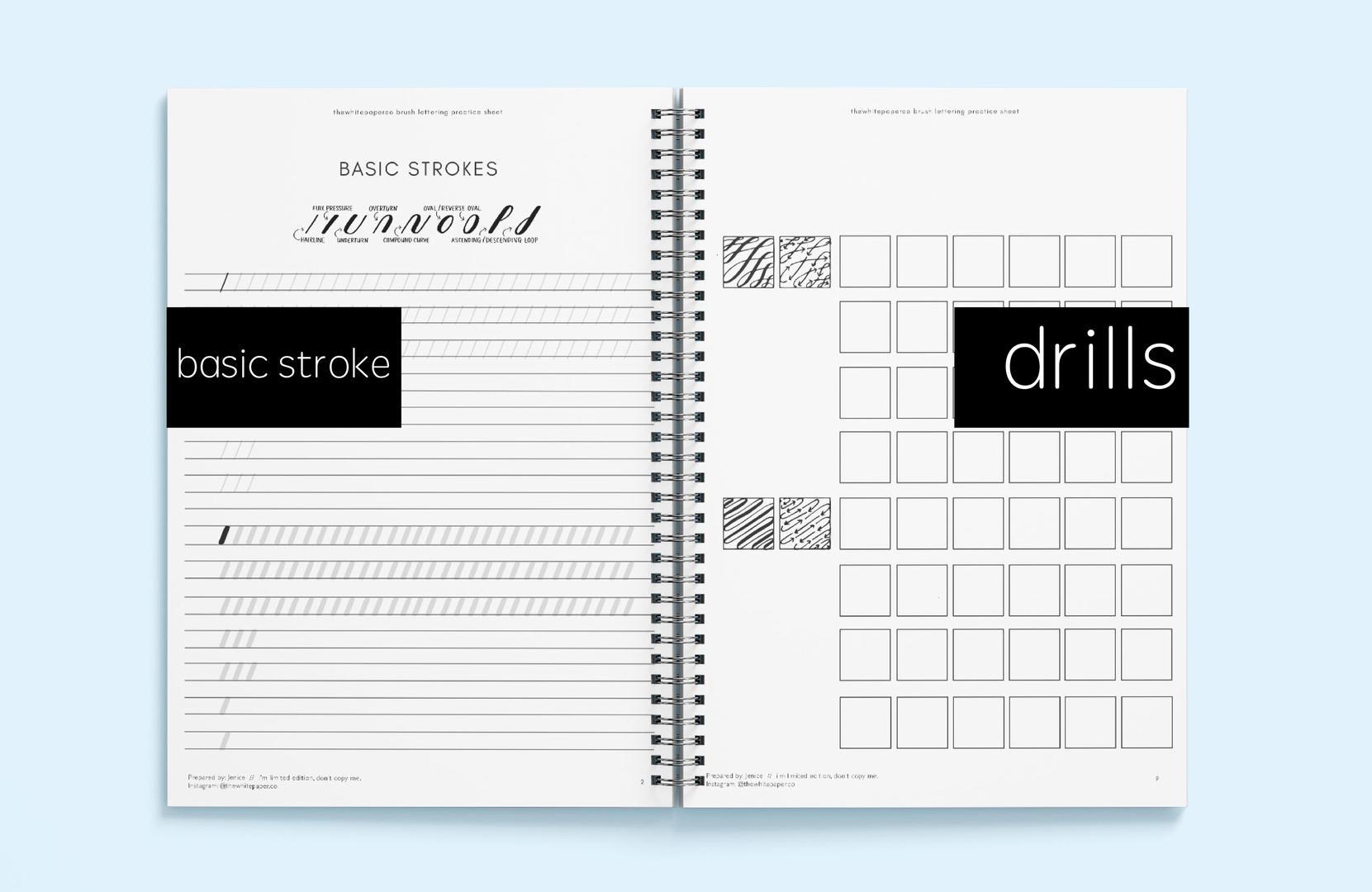 Basic Stroke & Drills Brush Lettering