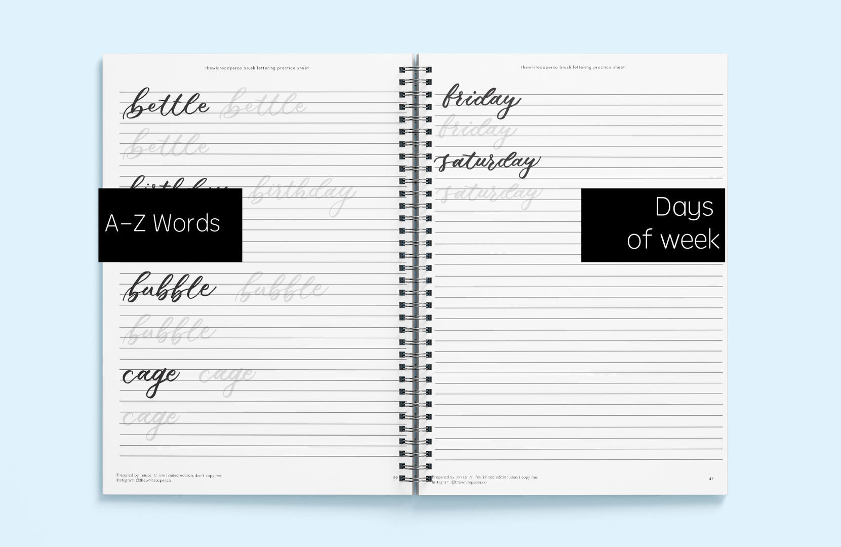 A-Z Words & Days of Week Brush Lettering