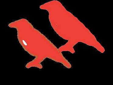 birds5.png