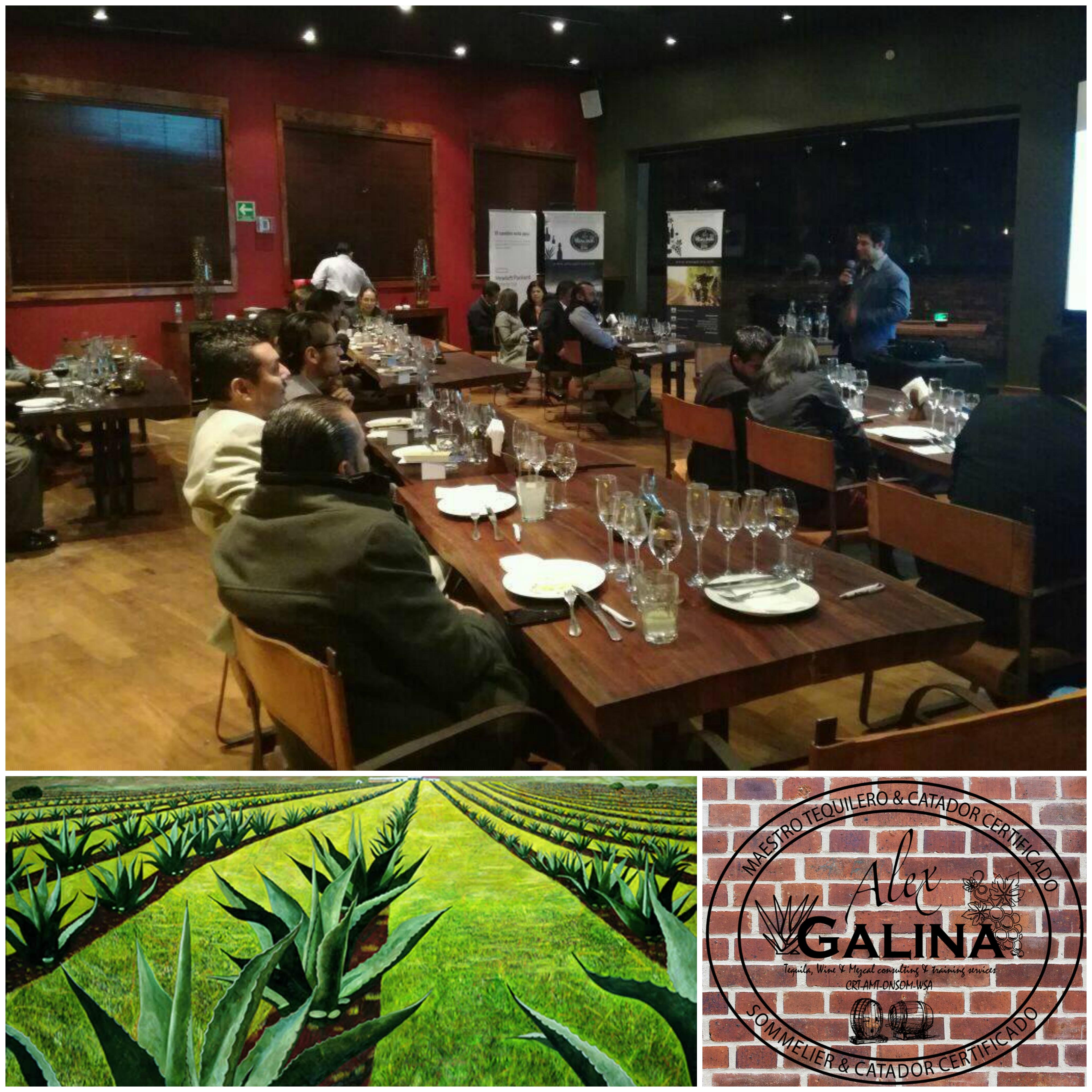Cata de vinos San Miguel de Allende
