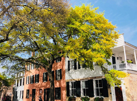 6 reasons why you should hire a property manager in Charleston.