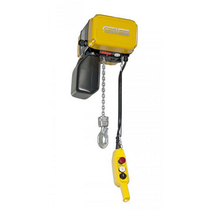 Electric Chain Abattoir Hoists