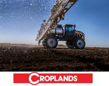 croplands wesbite.PNG
