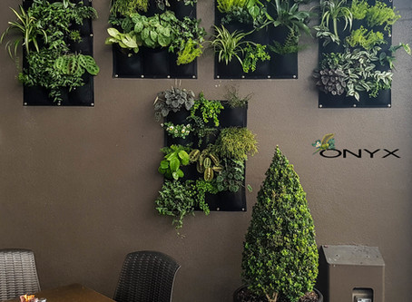 Have you checked out our new vertical garden yet?