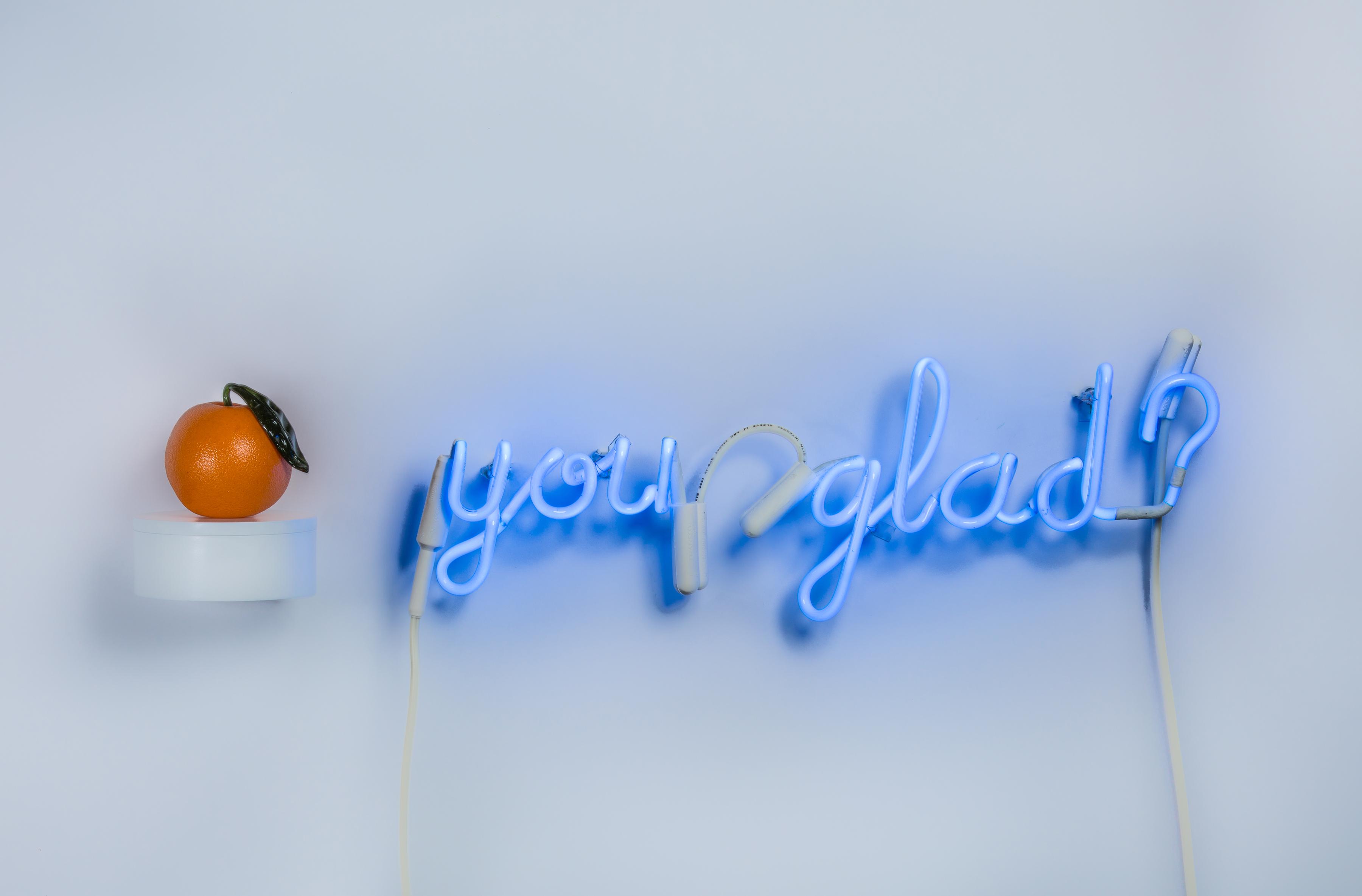 stelljes_megan_orangeyouglad