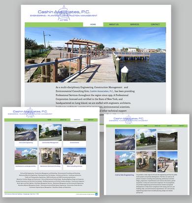 Cashin Associates, new Web Site.