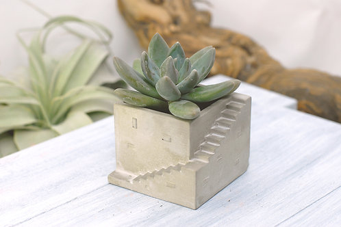 Geometric Architect Concrete Succulent Planter
