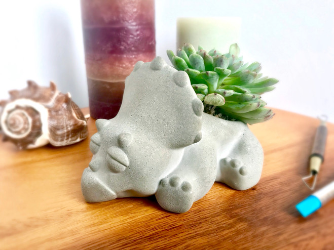 Baby Triceratops Succulent planter