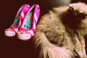 E,mma's shoes