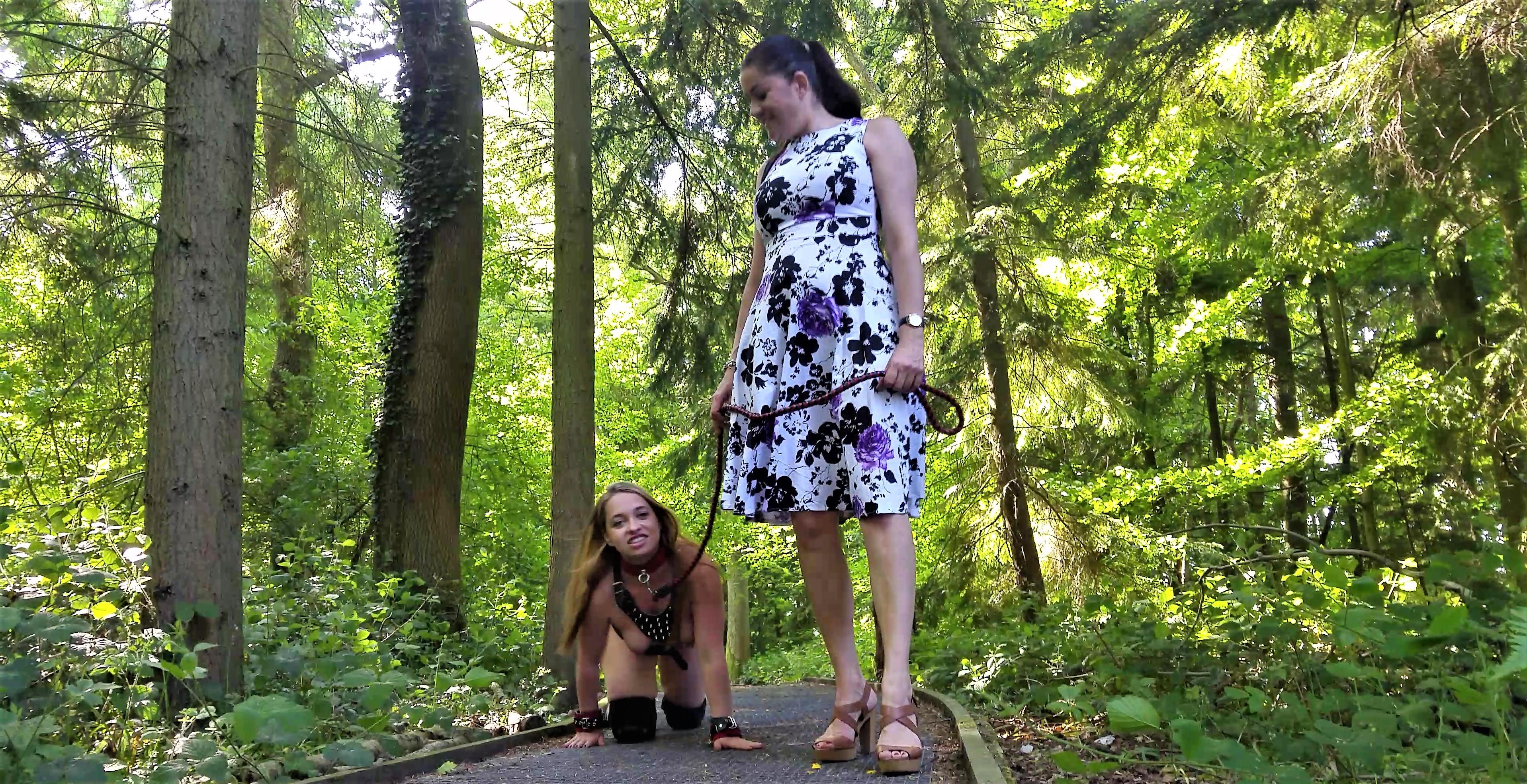 Terry Olga & Leia the dogs 26may17 Hemel_136