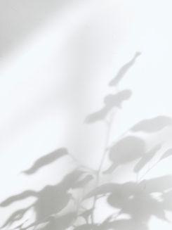 milad-b-fakurian-Tc_4PdN-Fq0-unsplash.jp