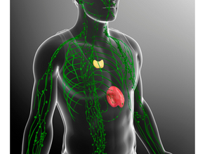 Love For Your Lymphatic System