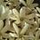 Thumbnail: Monoï à la Fleur de Tiaré 30ml
