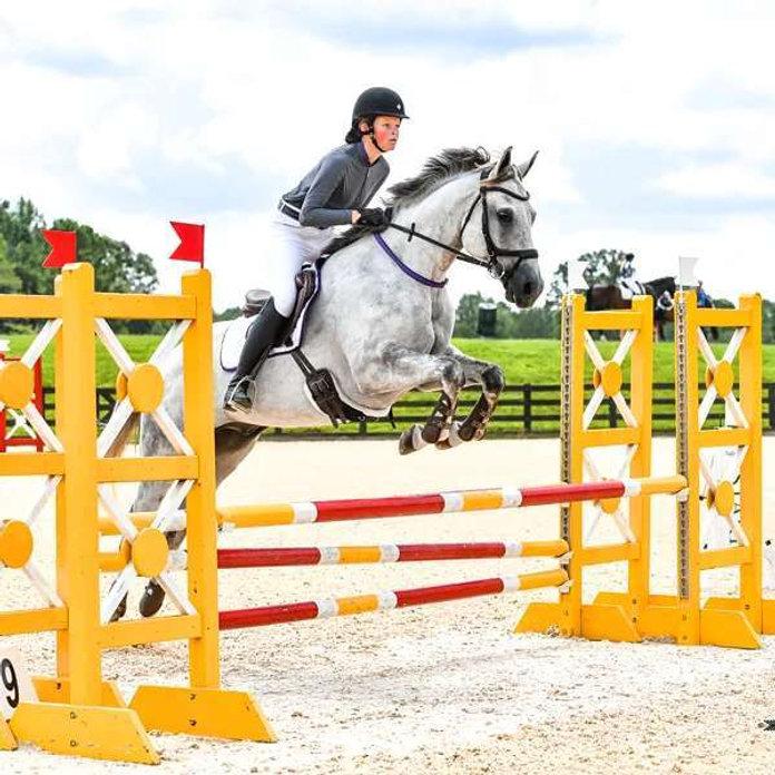 horsejump.jpg