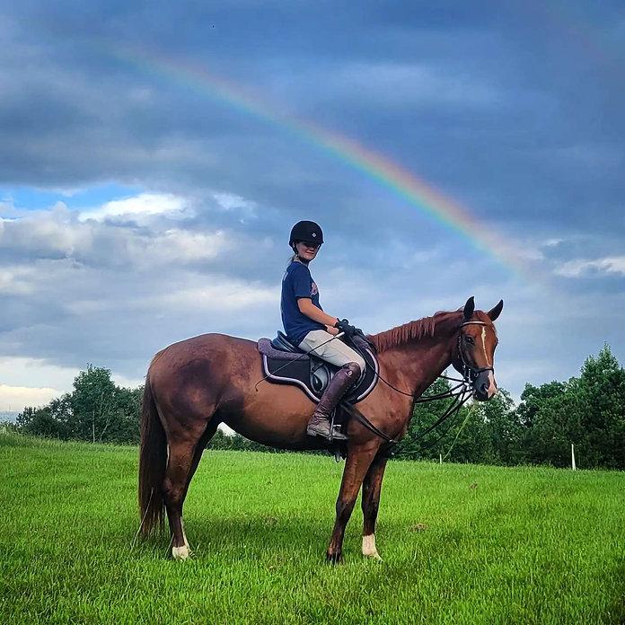 rainbow horse.jpg