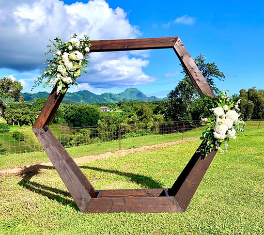Kauai hexagon wedding arch rental