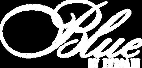 Logo_Blue_PNG_White.png