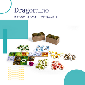 Dragomino Board Game Spotlight