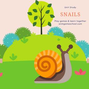 Snail Unit Study