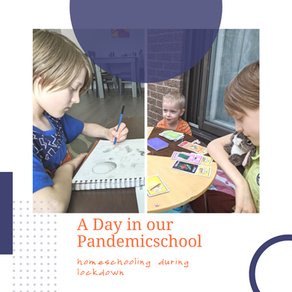 A Day in Our Pandemicschool