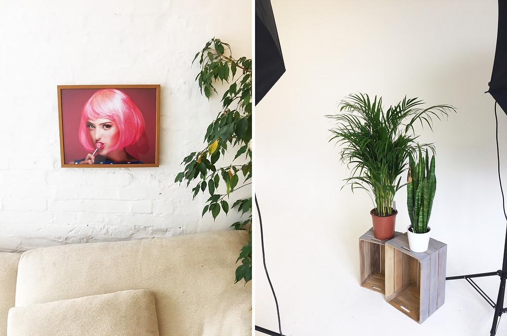 what alice found vintage studio photoshoot