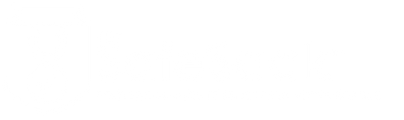 The SafeSack Logo-05.png