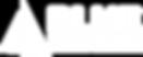 BlueWealth-logo-Horizontal_white.png