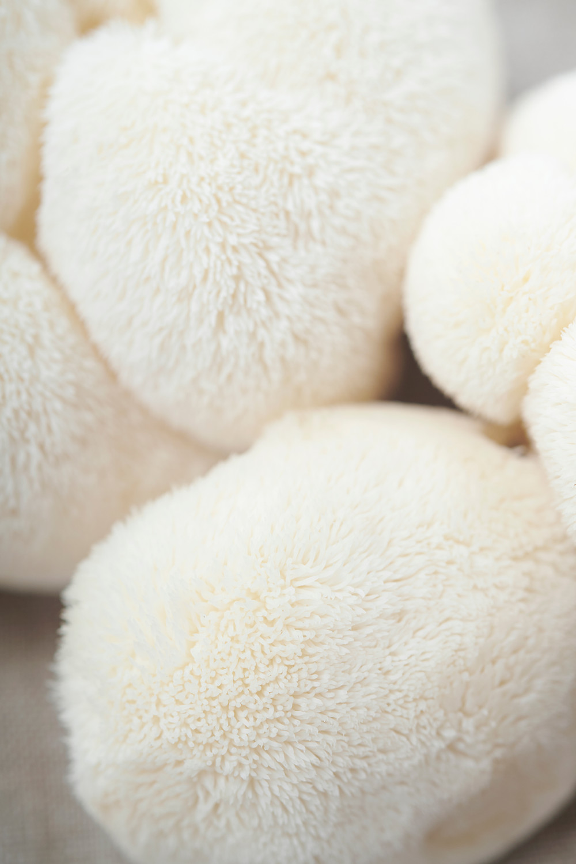 Mushroom supplements