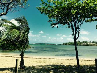 Guadeloupe, île poésie
