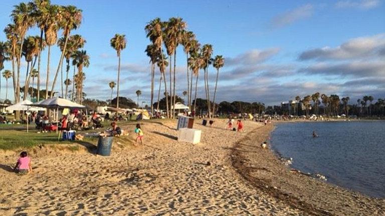 A Hornet Day At The Beach