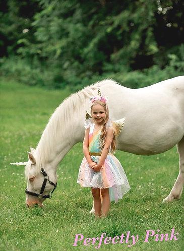 Unicorn Fairy Dress Set